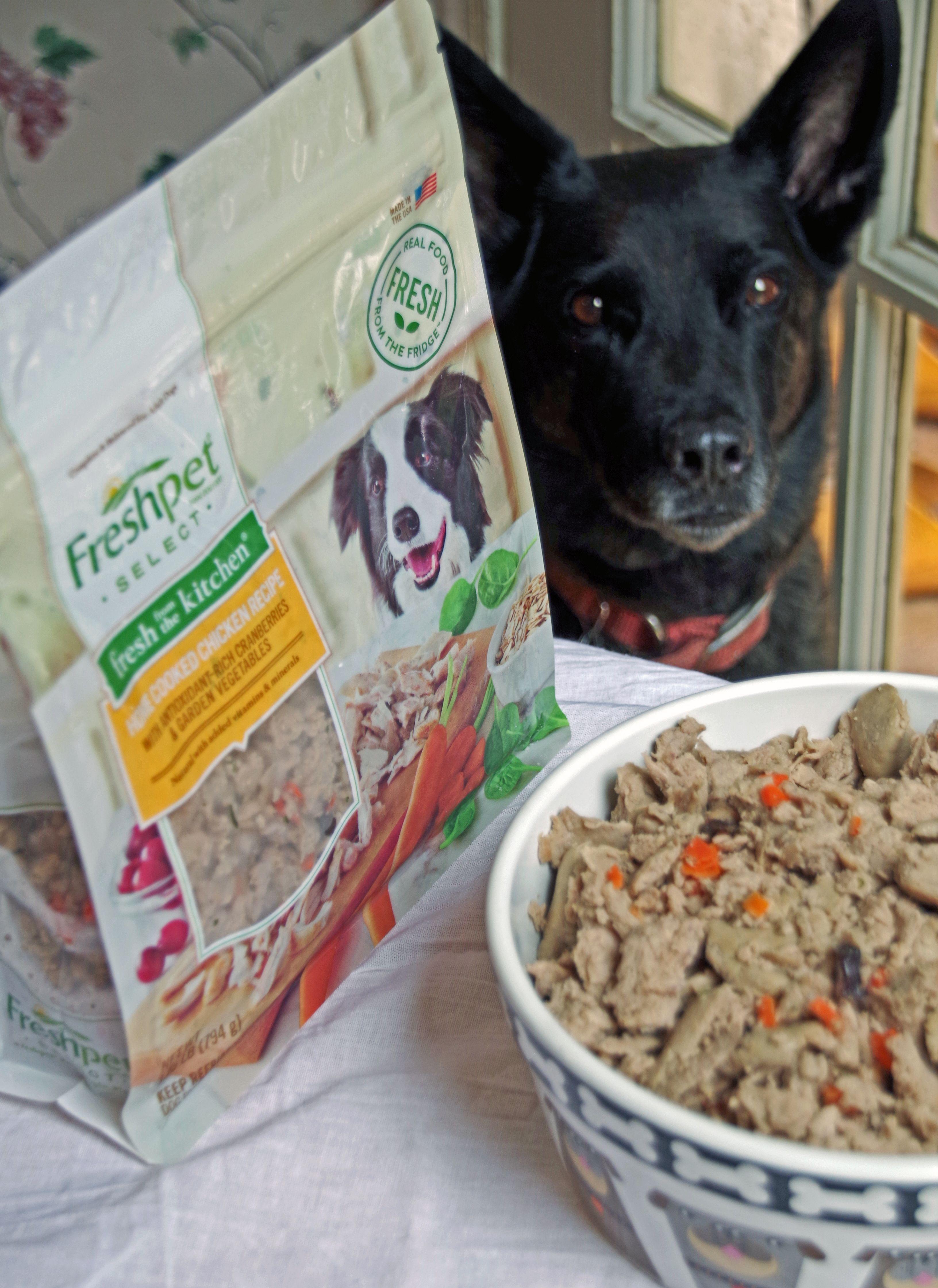 freshpet cat food ingredients