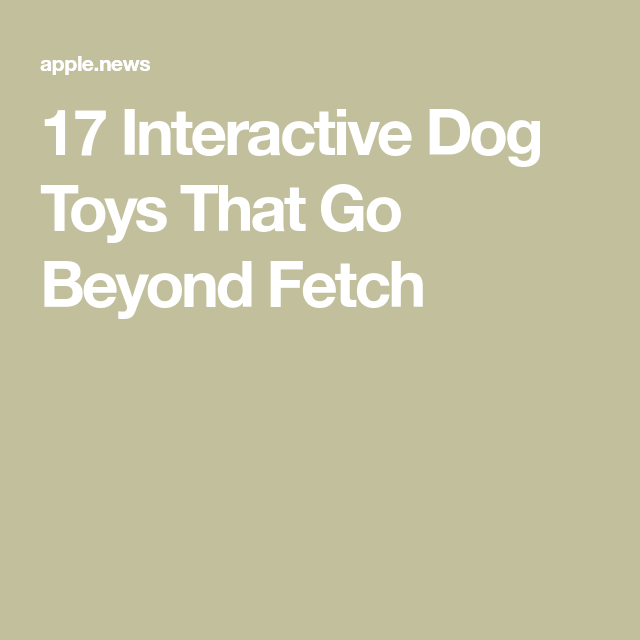 Interactive Dog Toys Exercise 17 Interactive Dog Toys That Go Beyond Fetch — Woman's Day
