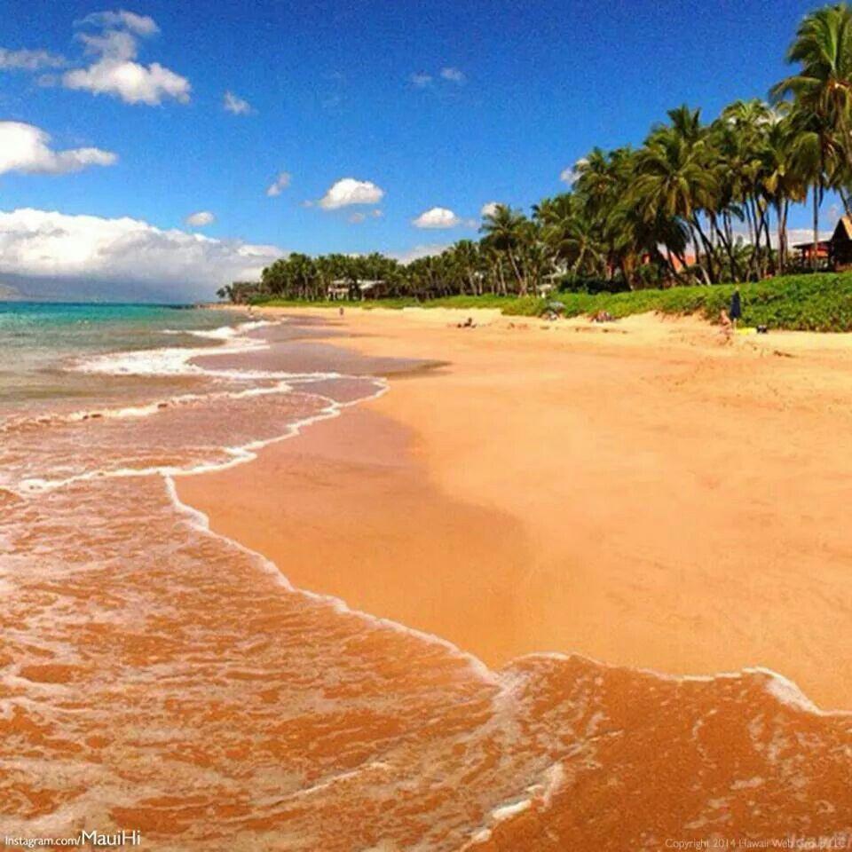 Maui #17