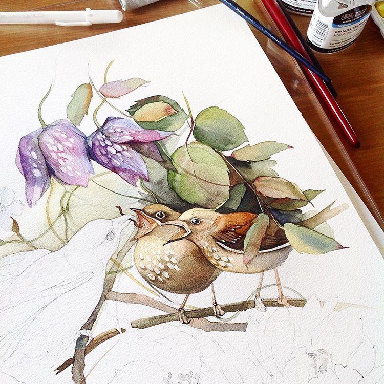 Watercolor Watercolour Aquarelle Botanical Botanicalart