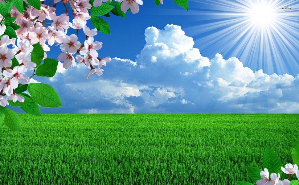 Sunny Spring Day Hd Wallpaper Free Wallpaper Backgrounds Landscape Wallpaper Beautiful Landscape Wallpaper