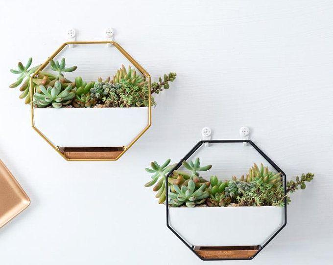 Photo of Geométrico suculento Planter plantador de vidrio colgante plantador colgante Terrarium Home Decor Airplant Holder Home Decor Office Decor HP017