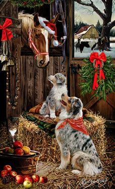 Australian Shepherd Welcoming Committee Christmas Card