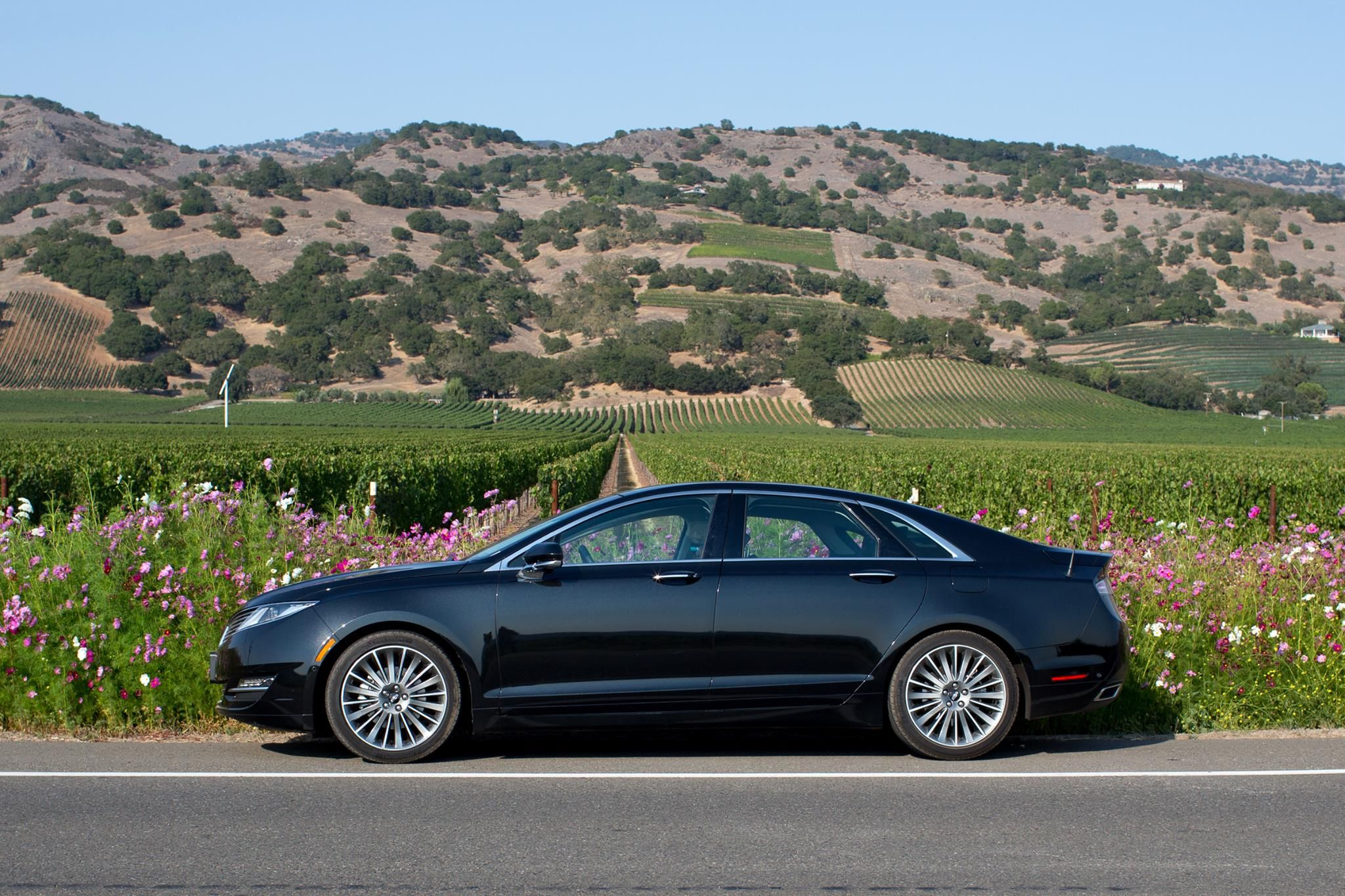 Spring Forward The Mkzhybrid Shot In Northern California With Images Lincoln Mkz Luxury Sedan