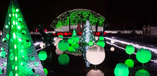 00f4de0205691a62b53bd4be3dba13cf - Botanical Gardens St Louis Light Show