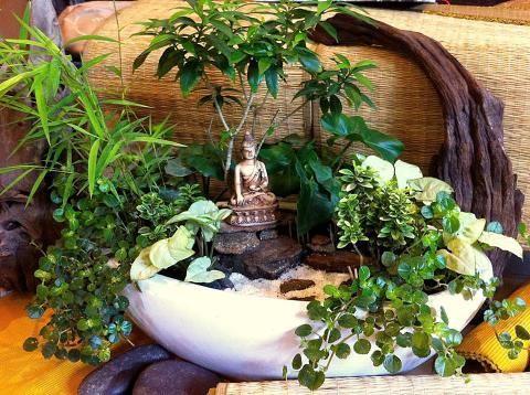 The Winners From The Great Annual Miniature Garden Contest Buddha Garden Mini Zen Garden Miniature Zen Garden