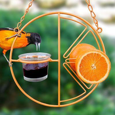 Clementine Oriole Feeder Oriole Fruit Jelly And Nectar Feeder Decorative Oriole Feeder For Feeding Orioles Oriole Bird Feeders Bird Feeders Wild Bird Feeders