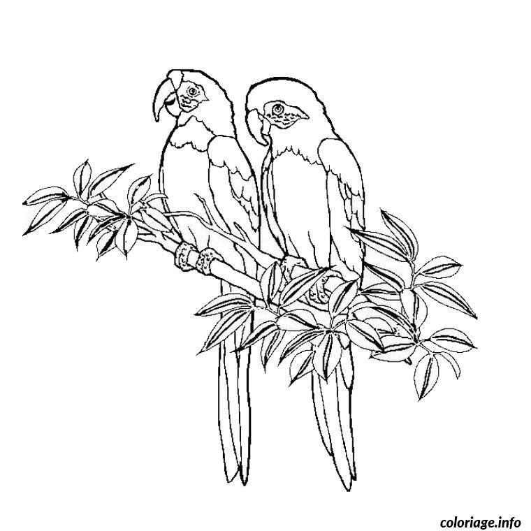 Coloriage adulte dessin 127 Dessin à Imprimer   Coloriages   Pinterest