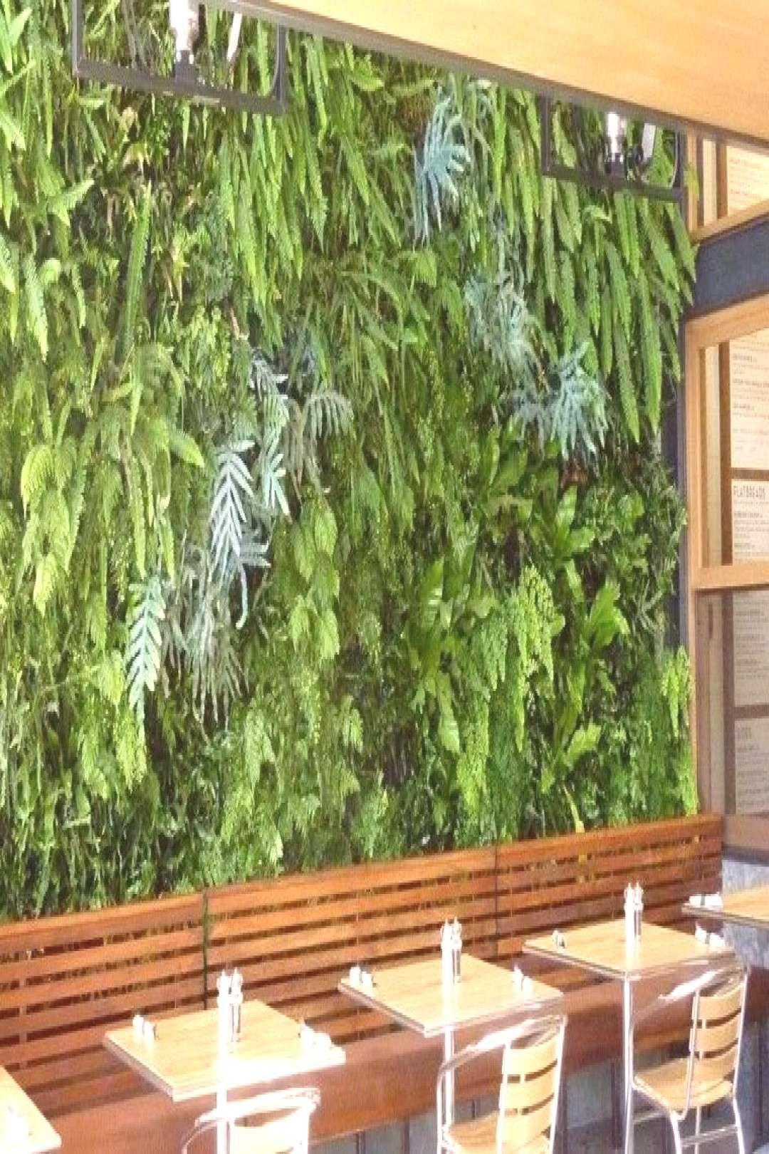 #restaurante #attribution #emplacement #domestiques #nonobstant #natu...