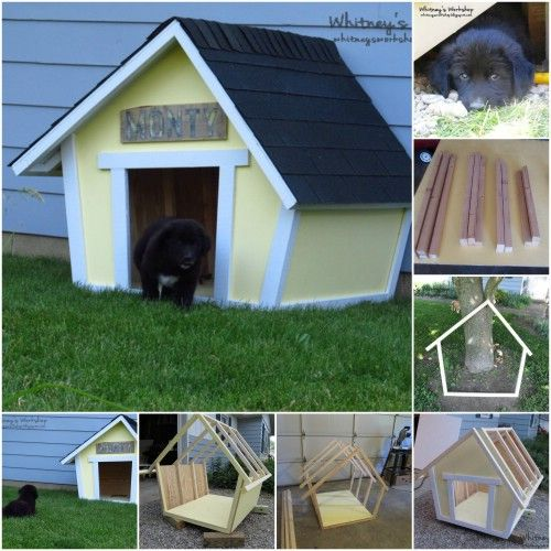 00f6fb0f7846913ba6a79b8697ee526f 15 Brilliant Diy Dog Houses With Free Plans For Your Furry On Diy Dog House
