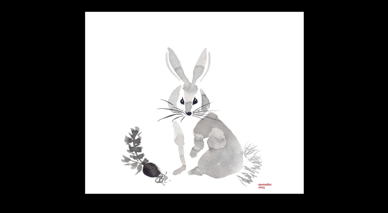 A rabbit, day 19.