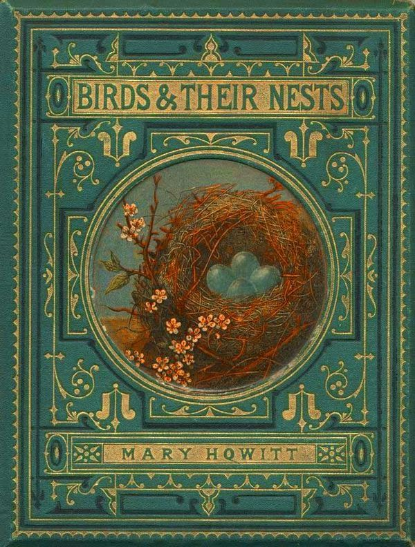 Birds Amp Their Nests By Mary Howitt 1895 Vintage Book