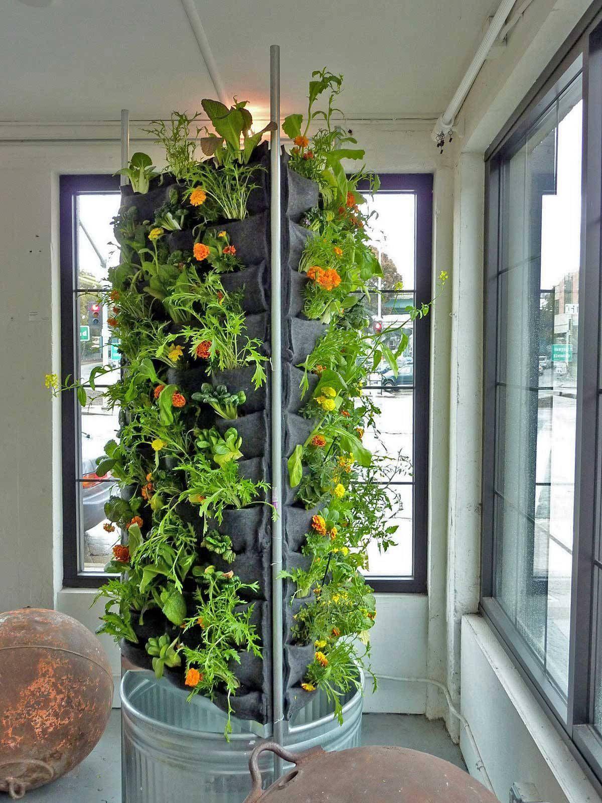 incredible indoor vertical garden apartment when you get on indoor herb garden diy apartments living walls id=68167