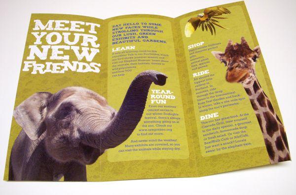 brochure design zoo - Google Search | ART217: Brochure