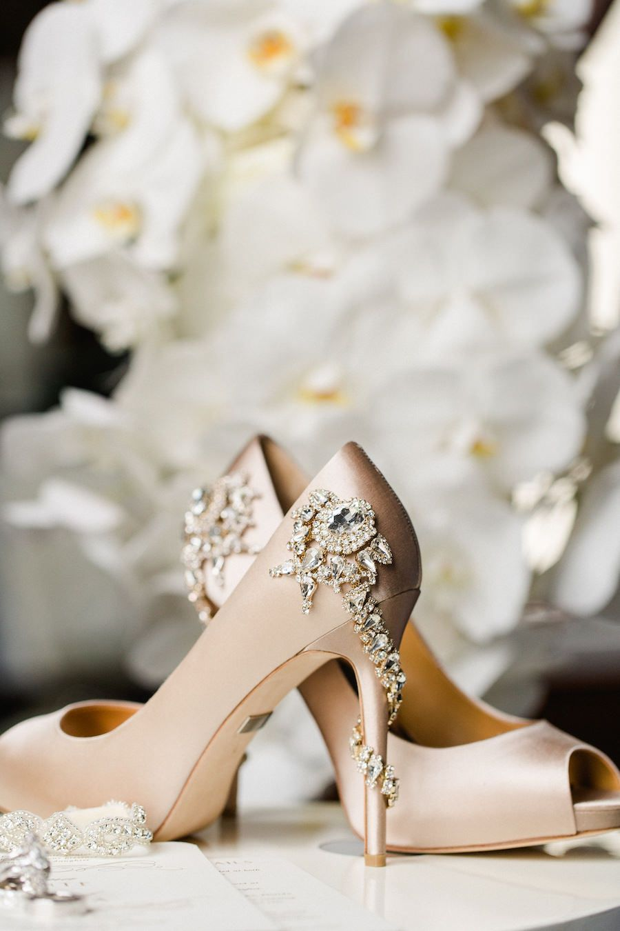 Nude Badgley Mischka Royal Evening Pumps Wedding Shoes with