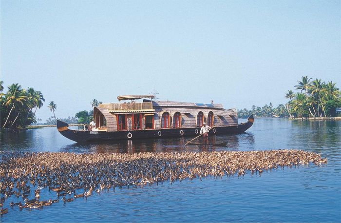 Soma Hamsam House Boat in Alleppey — Botels.me