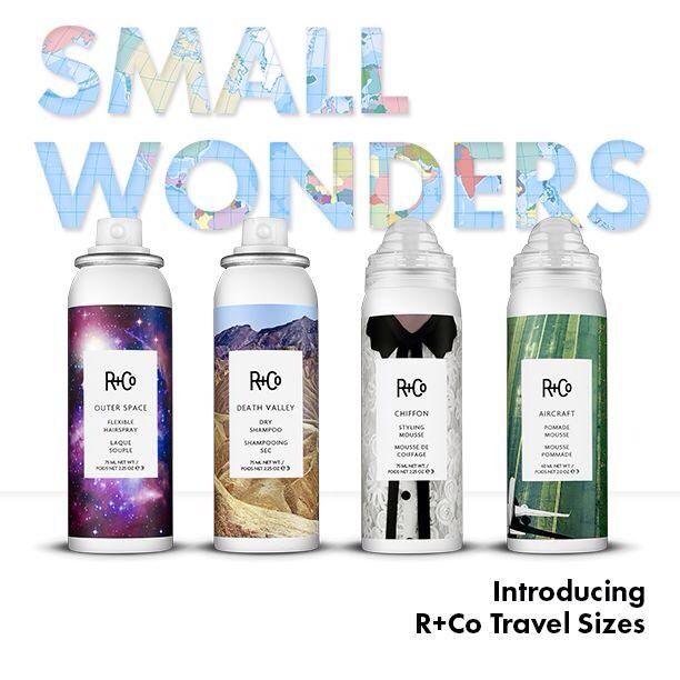 R Co Travelsizes Buzz Salon Best In Beauty R Co Dry Shampoo Travel Size Products