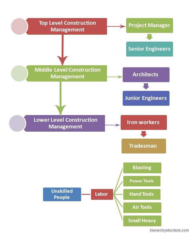 Hospital Management Hierarchy Management Hierarchy Pinterest - hospital organizational chart