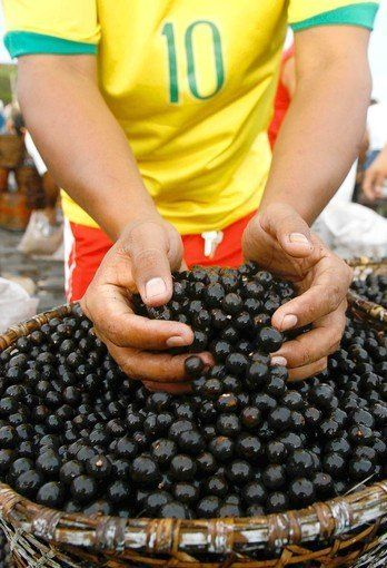 """Acai berries are among the exotic fruits being touted as """"super,"""" often because of antioxidant properties. (Andre Penner, Associated Press / March 31, 2012)"""