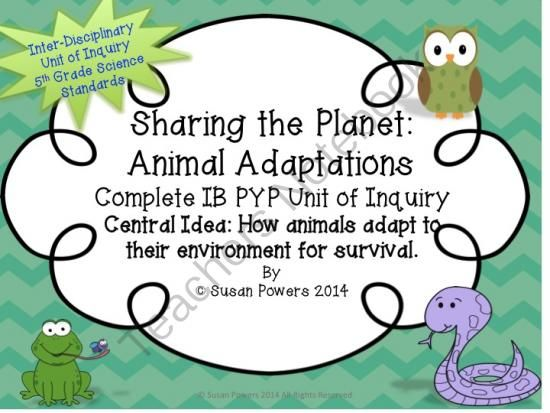 ib pyp complete science unit of inquiry animal adaptations from cool teaching tools on. Black Bedroom Furniture Sets. Home Design Ideas