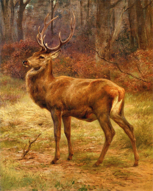 Famous Deer Paintings : famous, paintings, Bonheur:, Autumn, Landscape, Painting,, Animal, Paintings,