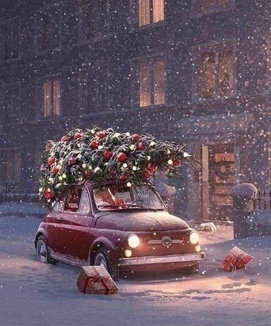 "magicwinter on Instagram: ""Winter ❄️ #winterwonder"