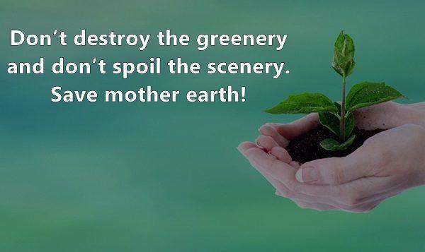 🎉 Save tree save environment slogan  Save Trees slogans in Hindi