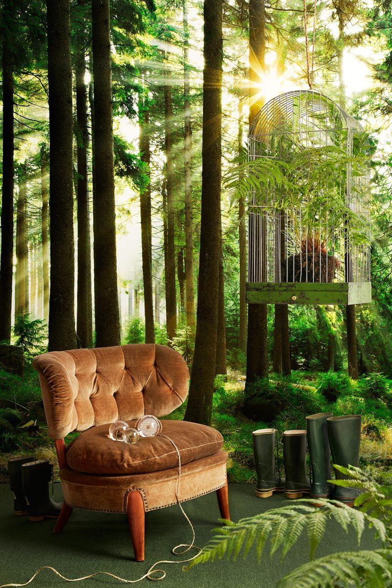 Tree Design Wallpaper Living Room: Photowall #photowall #photography