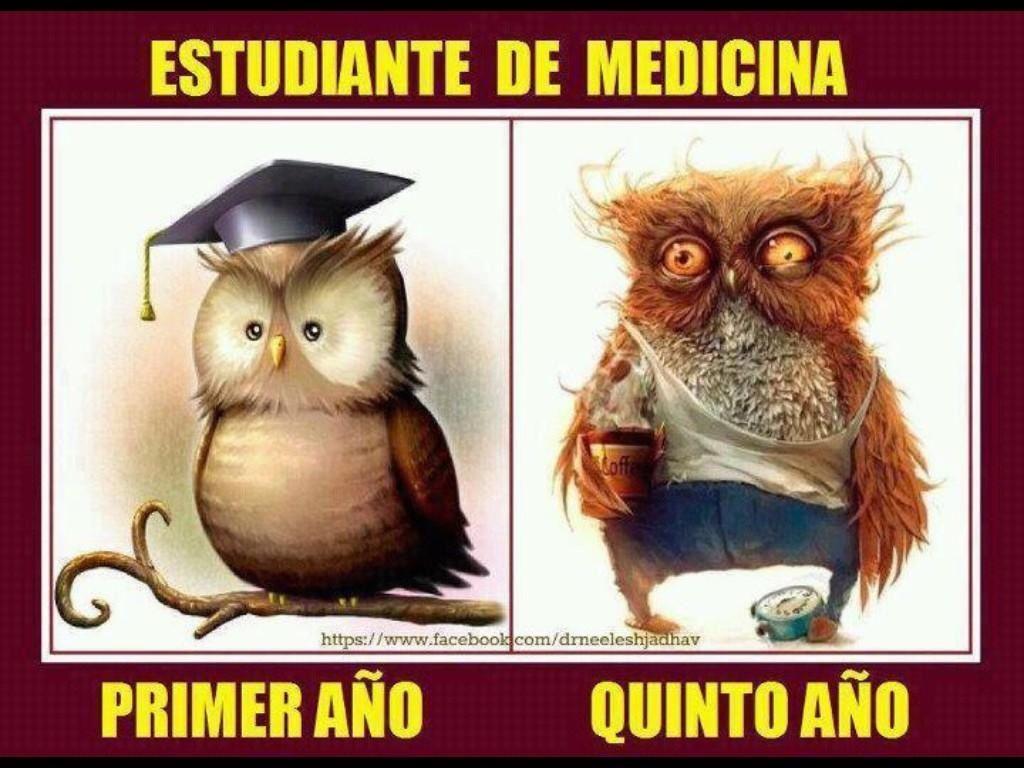 Evolución natural del estudiante de medicina