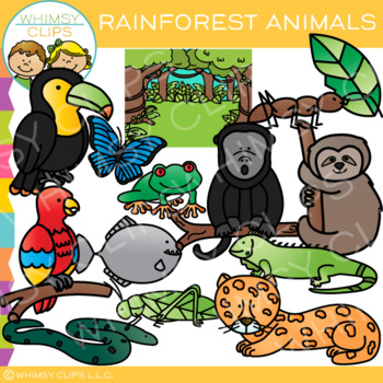 Rainforest Animals Clip Art Rainforest Animals Blue Morpho Butterfly Clip Art