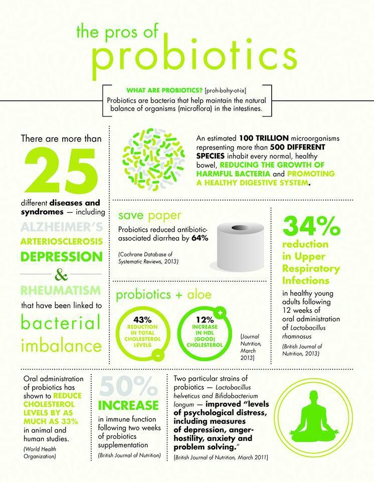 Probiotics Infographics Gut Health Pinterest Gut Health