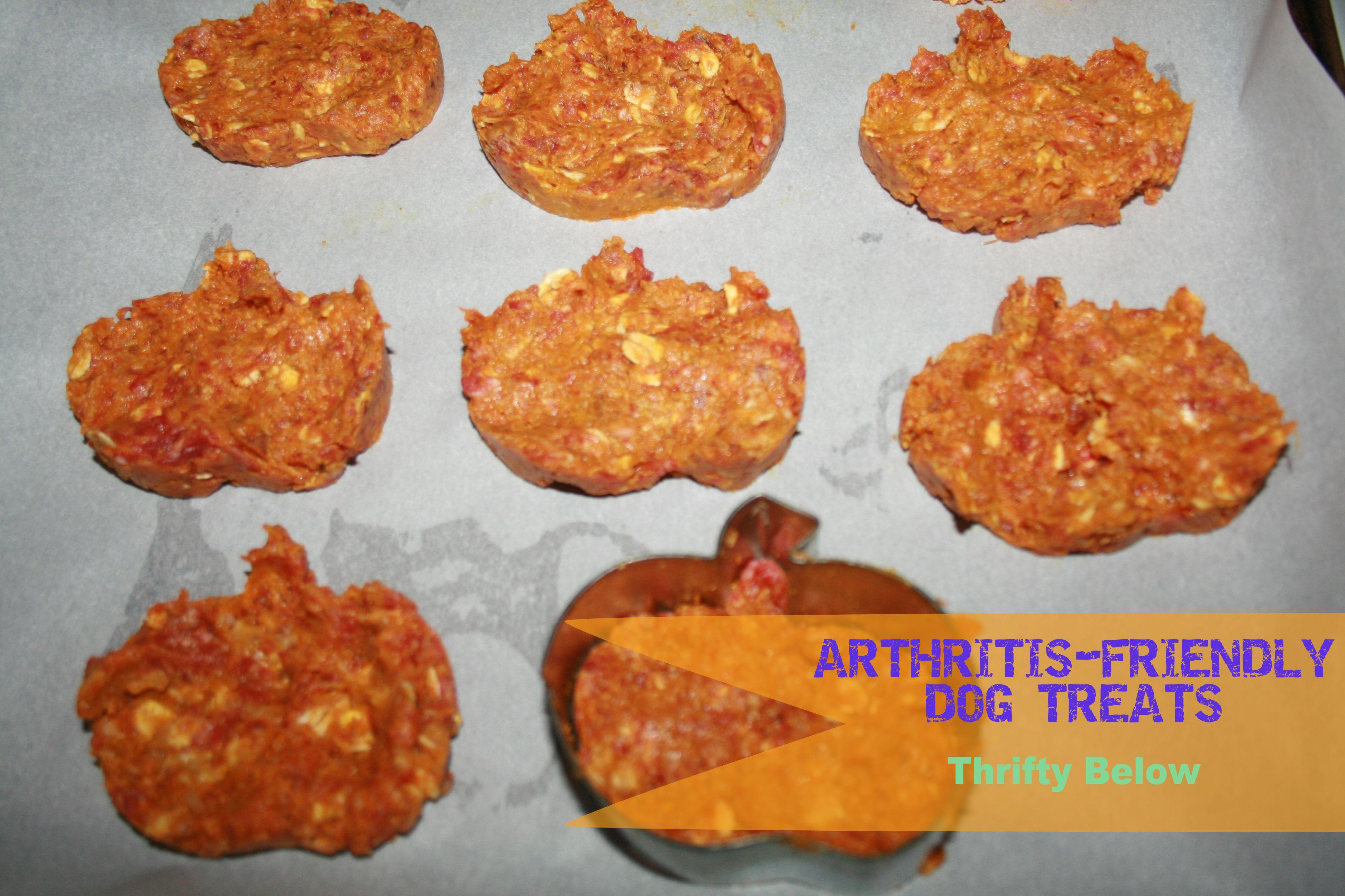 Arthritis Friendly Dog Treats Thrifty Below Recipe Homemade Dog Food Dog Food Recipes Pumpkin Dog Treats