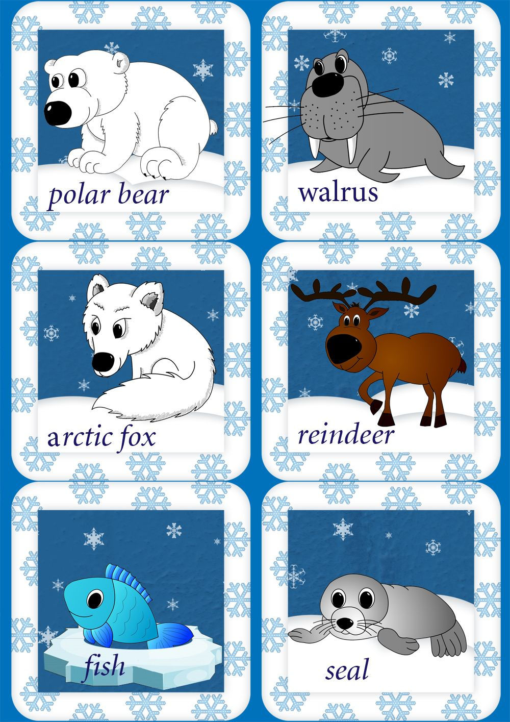 Polar animals coloring pages for kids - Arctic Animals English Flashcards