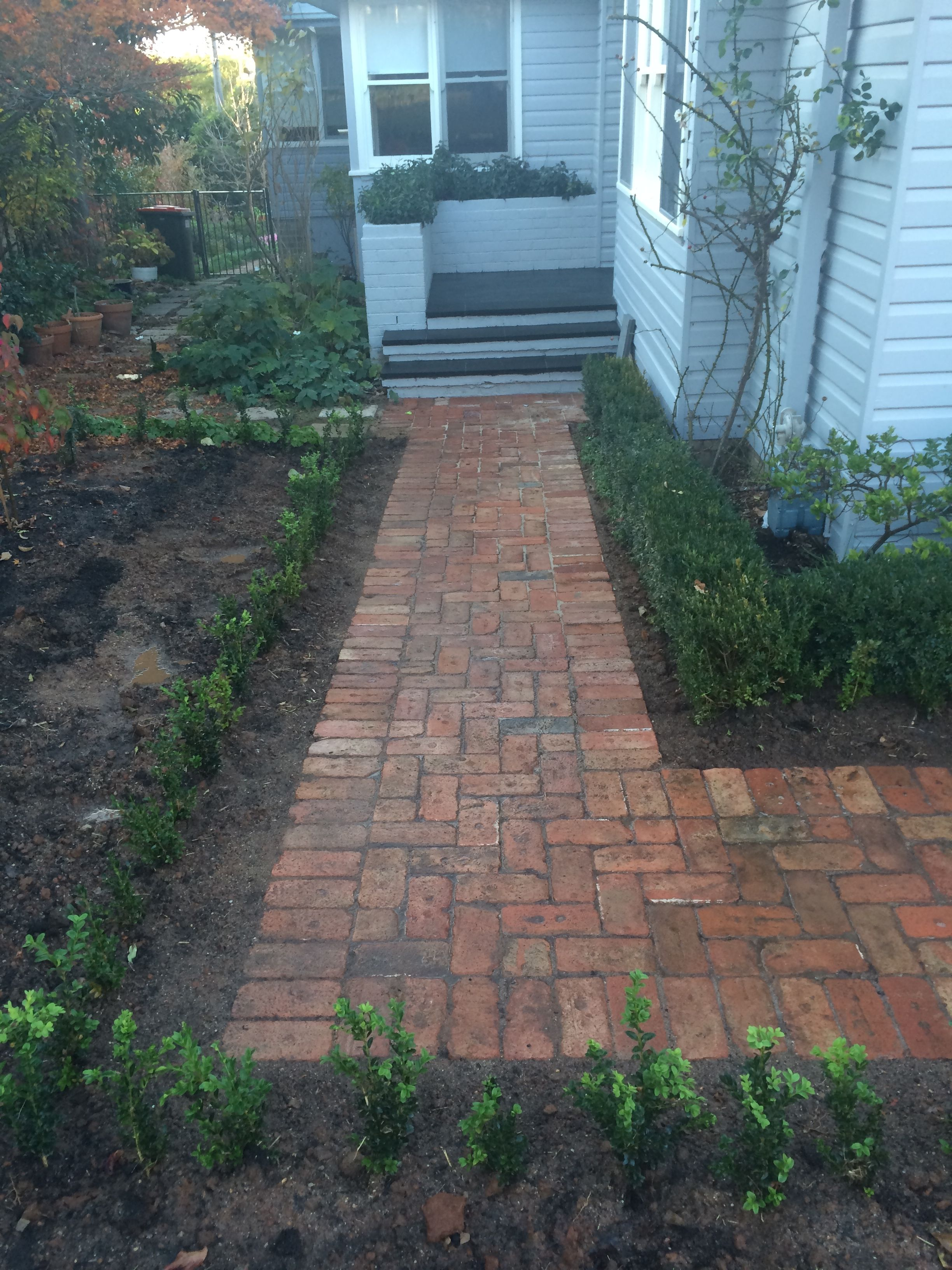 Paving using Canberra red bricks. | Walkway design ... on Red Paver Patio Ideas id=52806