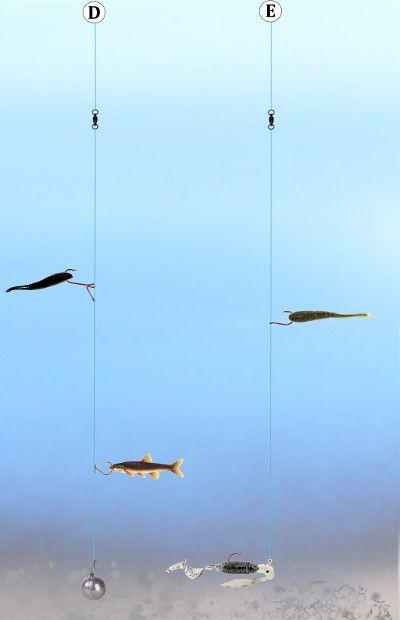 Fishing drop shot rigs bass fishing pinterest drop for Bass fishing rigs
