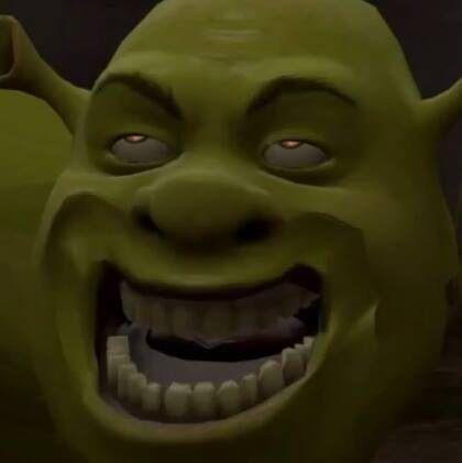 Weird Faces Shrek 4