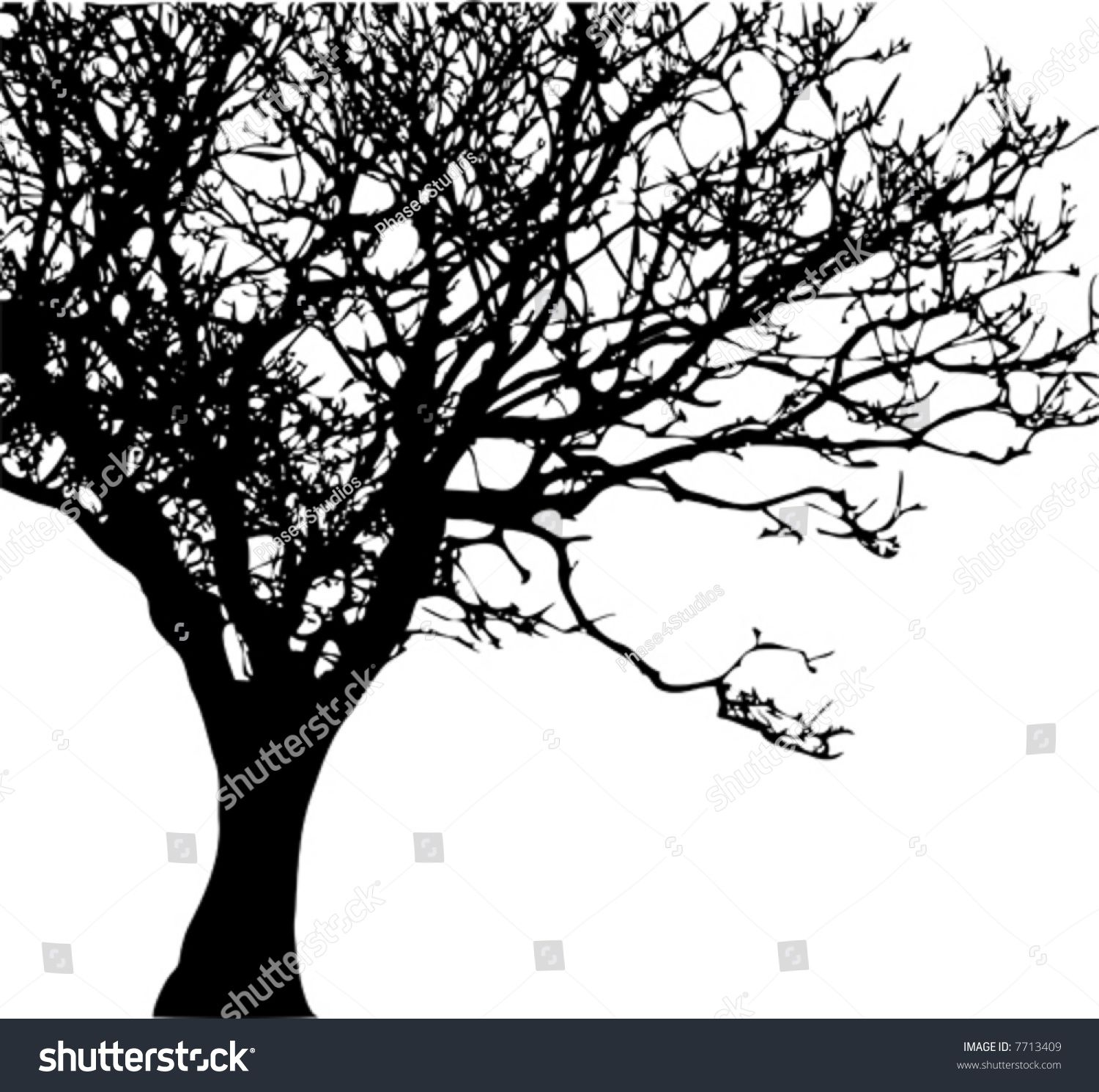 Vector Of A Tree Silhouette Ad Ad Vector Tree Silhouette Tree Silhouette Vector Trees Vector Free