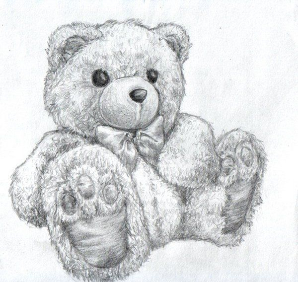 Pencil Drawings Of Teddy Bears My Favorite Coloring Pages