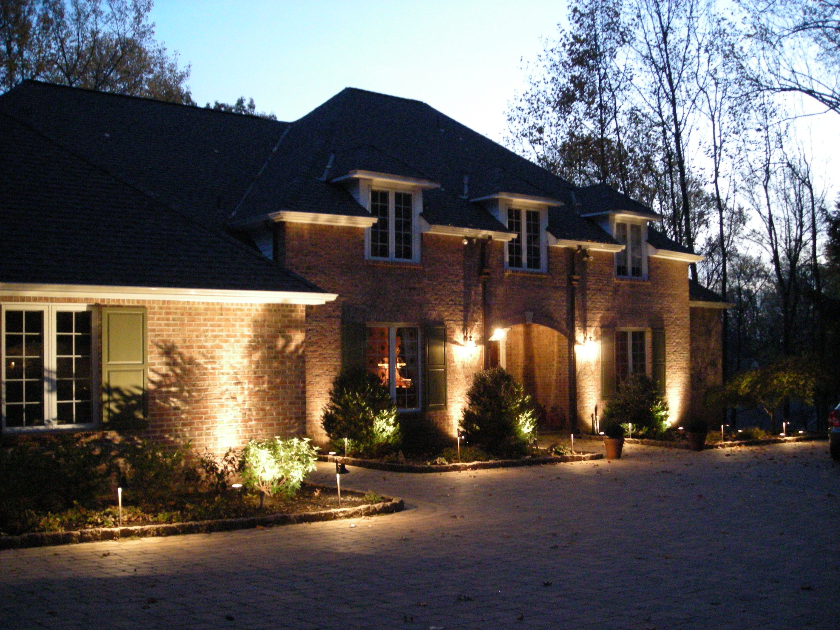 Spotlights And Floodlights Work Well To Highlight Trees Shrubs
