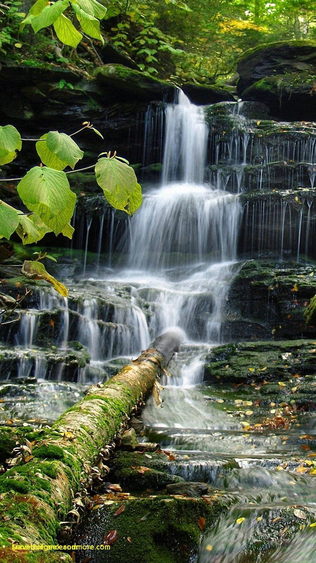 Nature Water Hd Wallpaper Android In 2020 3d Nature Wallpaper