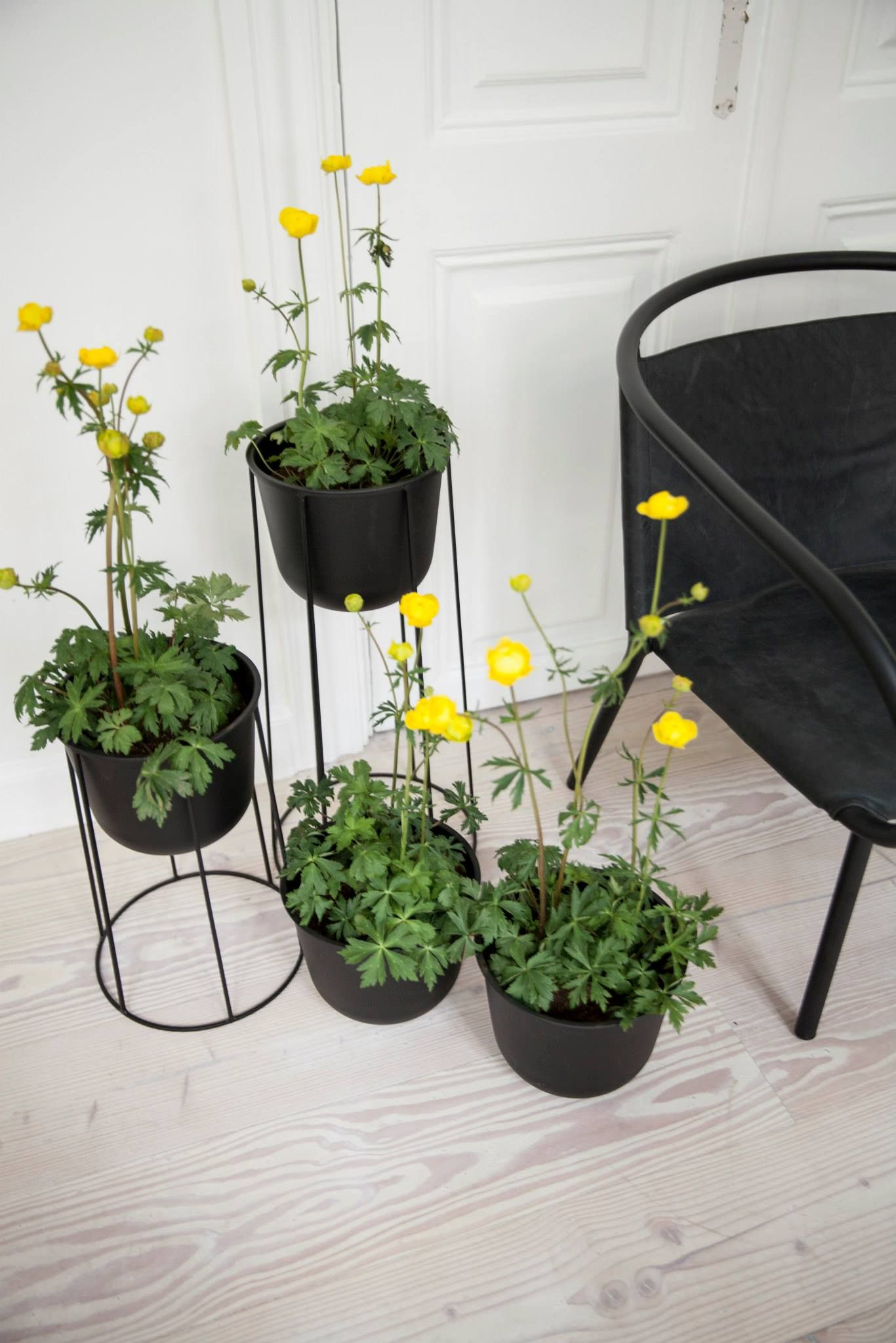 Wire Pot by Norm Architects for Menu plant life