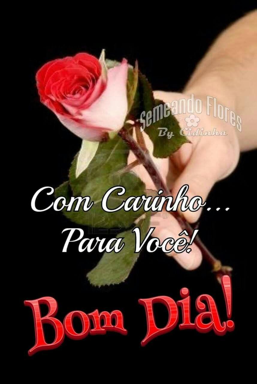 Pin De Hana Em חנה Imagens Fofas De Bom Dia Bom Dia Com Flores