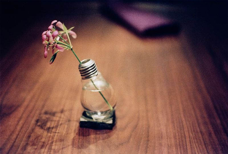 Light Bulb Vase, a little dangerous though? Probably easy to break and get cut?