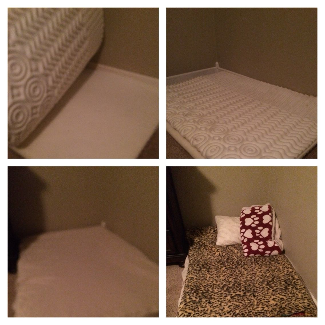 DOG BED! Cheap DYI For Those Large Babies! 1. Purchase