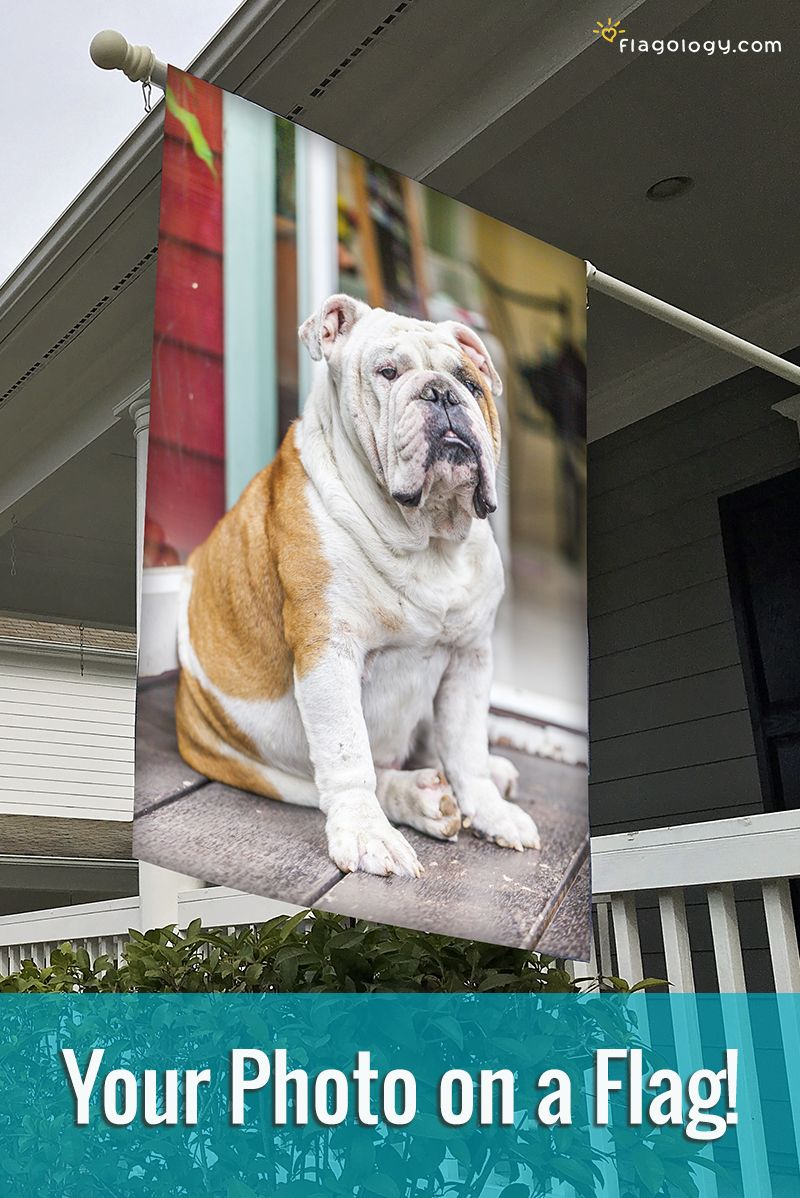Create A Flag For Your Dog Featuring Their Photo Design Online In