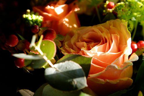 Romantischer Blumenstrauss / Romantic Roses