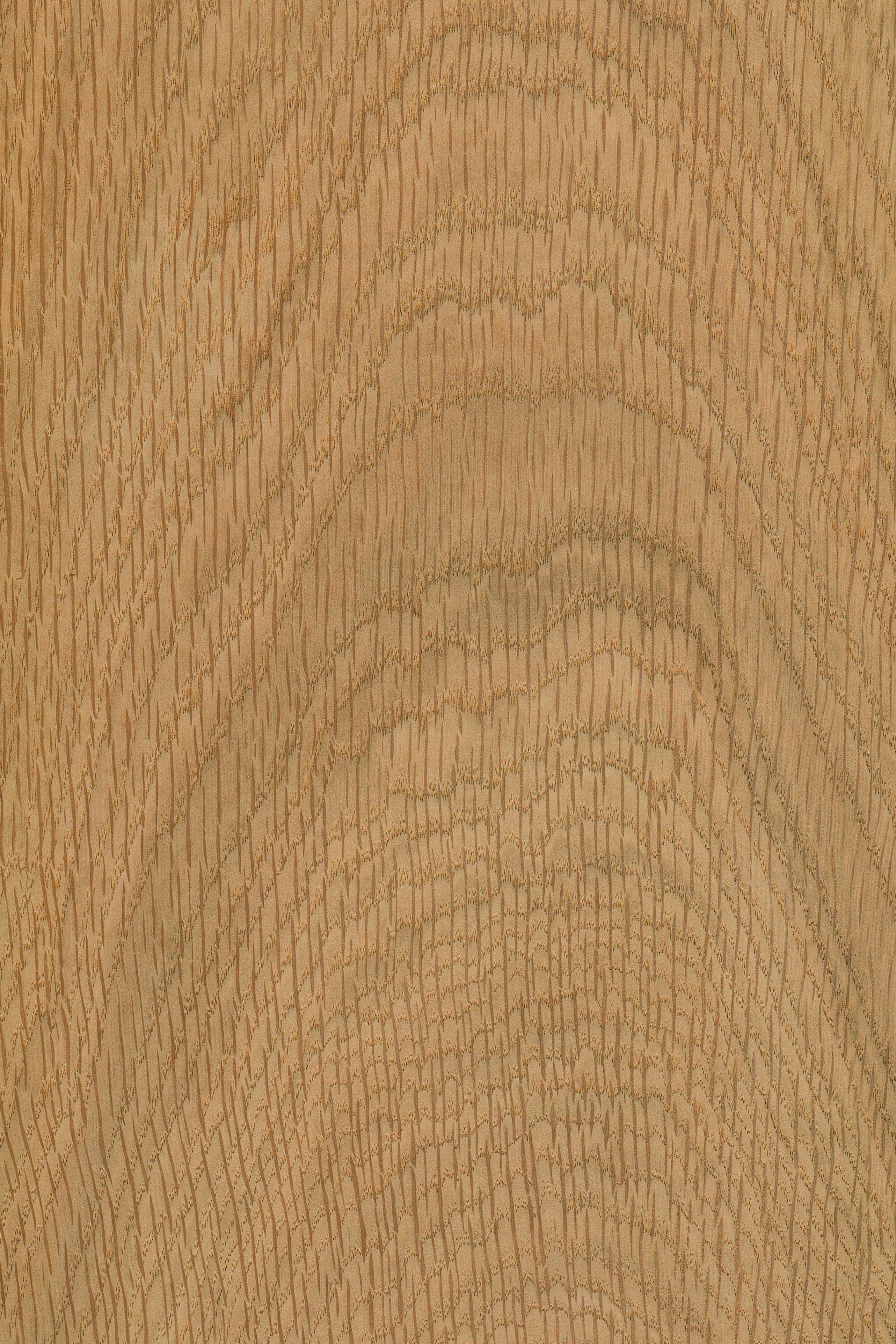 Pin Auf Holzarten