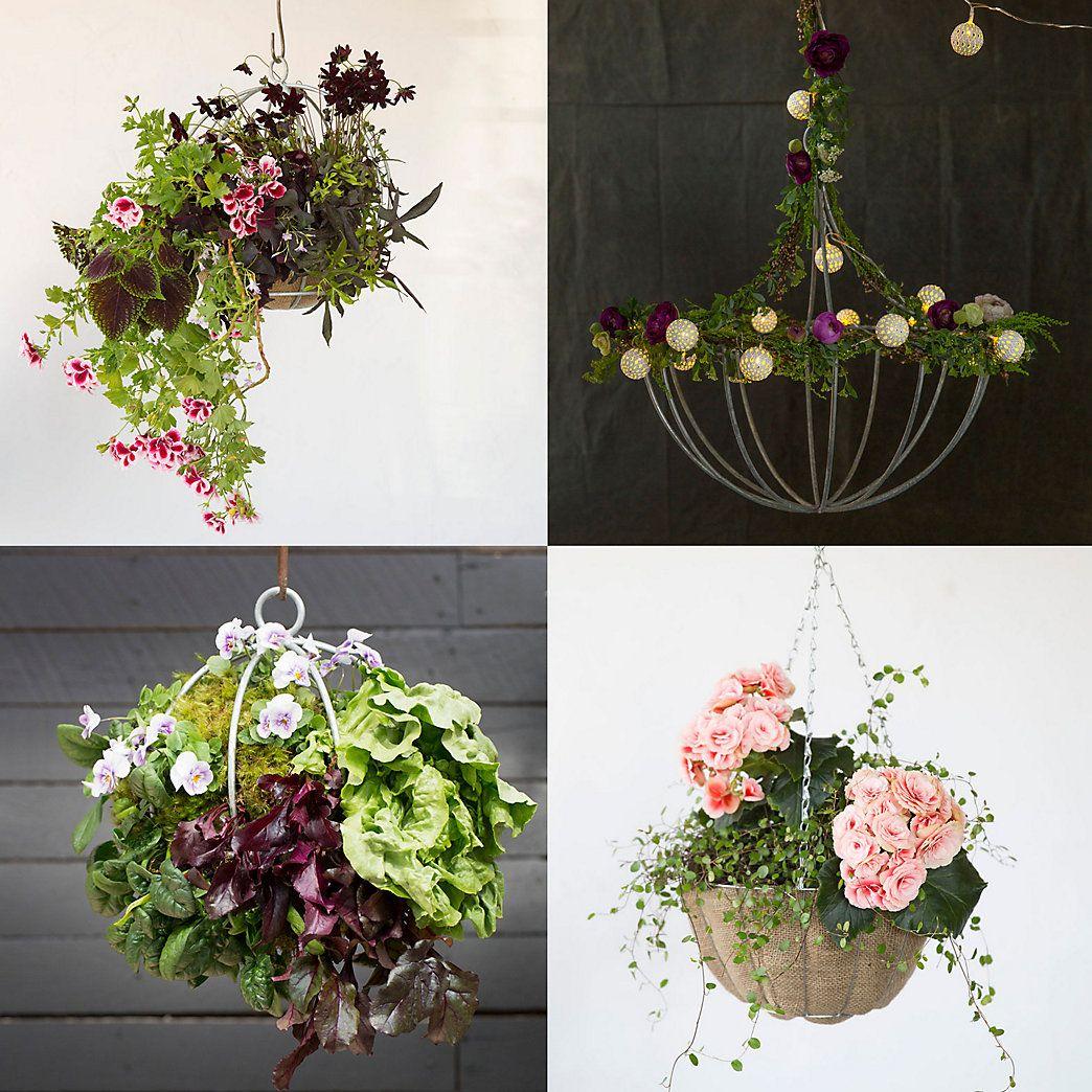 Our Best Brightest Baskets Perennials Gardens And Flowers Garden