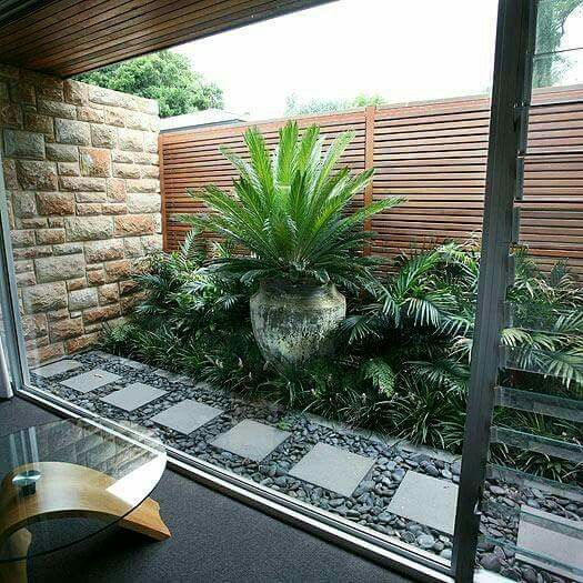 Jardines interiores jardines verticales pinterest for Patios interiores pequenos