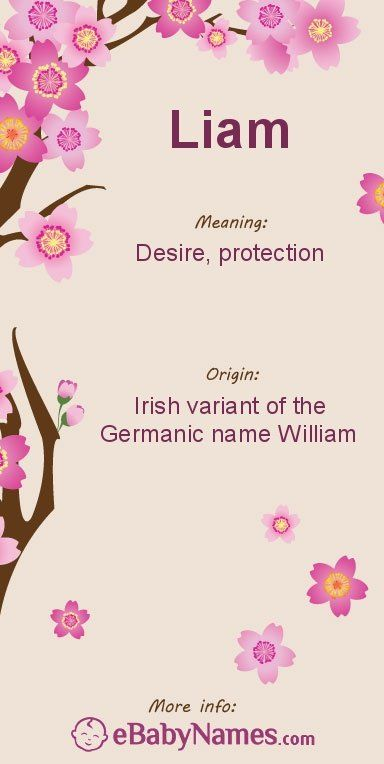 Meaning of Liam: Liam originated as an Irish diminutive form of ...